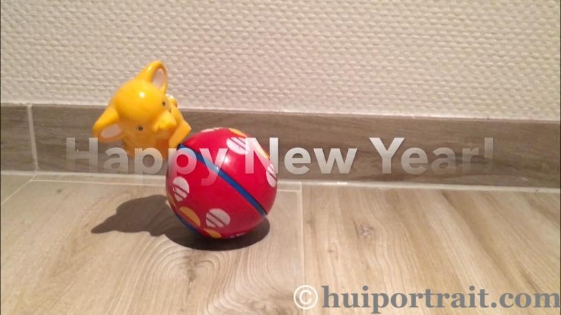 7.Blog: Frohes Neues Jahr 2018- Leben wie ein Stehaufmännchen – Hui ...